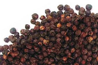 Poivre en grain noir 250 grammes
