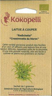 Graines de Laitue Radichetta / Cressonnette du Maroc